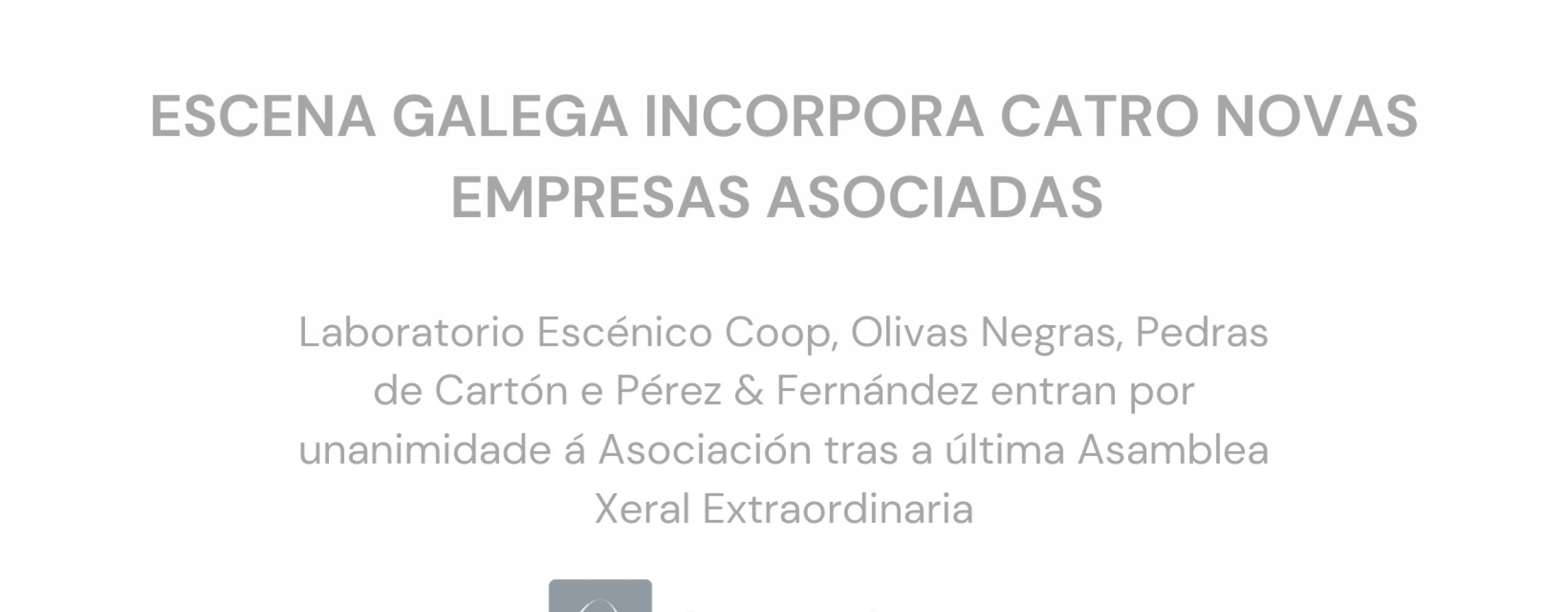 Escena Galega consolídase como a asociación sectorial máis aglutinante a nivel estatal coa incorporación de catro novas compañías asociadas